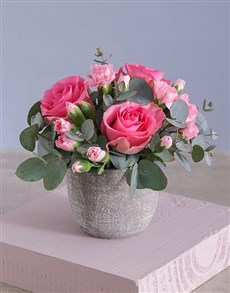 flowers: Trio of Pink Roses in Cement Pot!