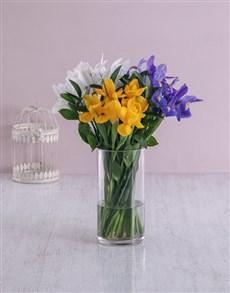 flowers: Glass Iris Mix!