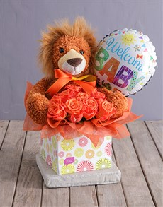 gifts: New Baby Lion Hamper!