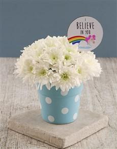 flowers: I Believe In You Sprays In Pot!