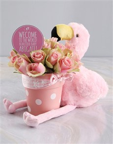 flowers: Pretty And Pink Potted Roses And Teddy Gift!