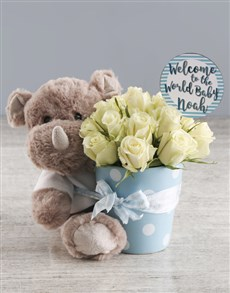 flowers: Lovely White Potted Roses And Teddy Gift!