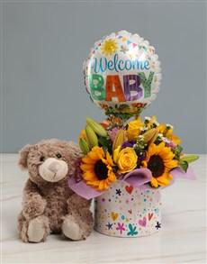 flowers: Newborn Baby Sunflower and Plush Bear Hamper!