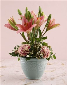 flowers: Topiary Tree Pink Lilies!