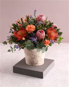 gifts: Beguiling Protea and Rose Arrangement!