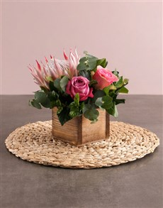 gifts: Pink Protea and Rose Arrangement!