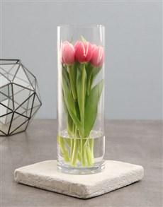 flowers: Classic Pink Tulip Elegance!