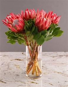 flowers: Royal King Protea Display!
