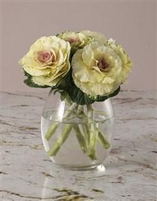 flowers: Vibrant Mixed Kale Arrangement!