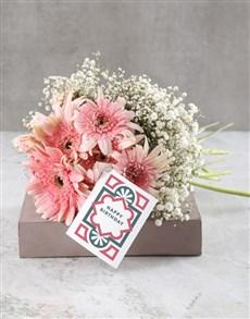flowers: Playful Pink Gerberas!