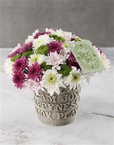 flowers: Mixed Hue Spray Arrangement!