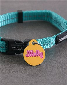 gifts: Personalised Molly ID Tag and Collar!