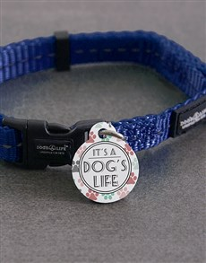 gifts: Personalised Dogs Life ID Tag and Collar!