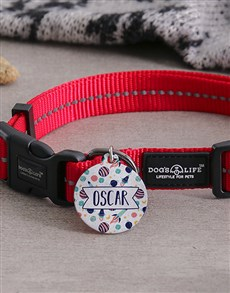 gifts: Personalised Spaceship ID Tag and Collar!