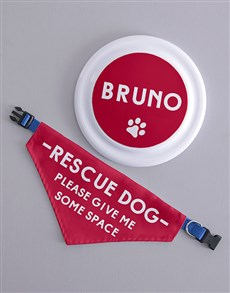 gifts: Personalised Rescue Dog Frisbee and Bandanna !