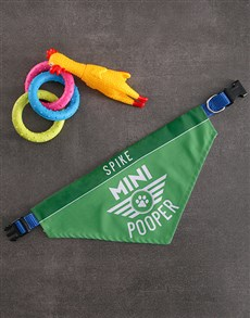 gifts: Personalised Pooper Bandanna And Toys!