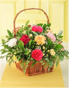 gifts: Mixed Carnation Basket!