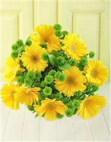 flowers: Lemon & Lime!