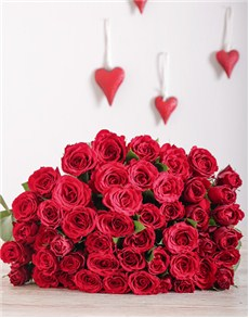 flowers: Cellophane Wrapped Red Roses !