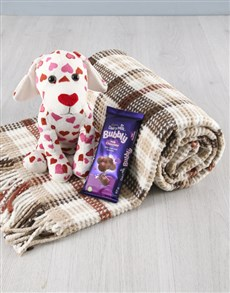 gifts: Heart Puppy Teddy And Blanket Set!