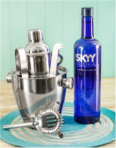 gifts: Skyy Vodka with Martini Accessories!