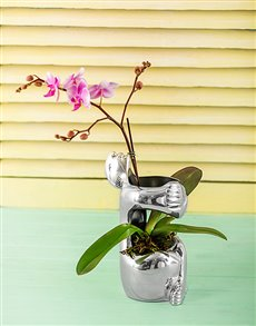 Gifts and Hampers - All Gifts: Carrol Boyes Vase - Embrace!