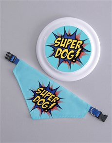 gifts: Super Frisbee and Bandanna !
