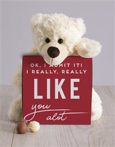 gifts: I Really Like You Teddy Hamper!