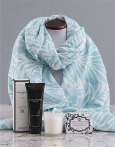 gifts: Blue Nature Scarf and Charlotte Rhys Gift!