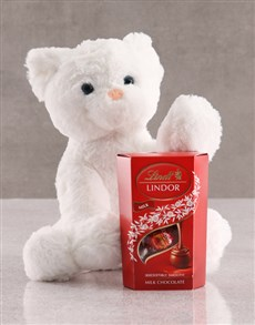 gifts: Cat Teddy And Lindt Chocolate!