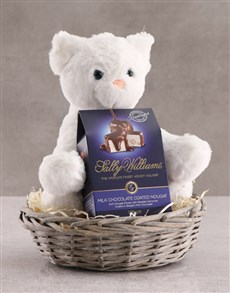 gifts: Cat Teddy With Chocolate Basket!