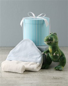 essentials: Dinosaur And Baby Bath Time Hat Box Hamper !