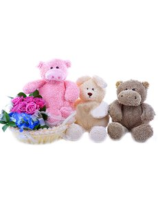 gifts: Friends and Roses Gift Basket!