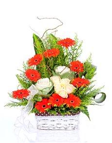 flowers: Gerbera Daisies and Roses Basket!