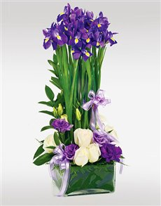 flowers: Flower Vase   Purple Irises!