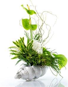 flowers: Flower Vase   Neptune's Gift!