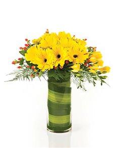 flowers: Flower Vase   Yellow Gerbera Daisies!