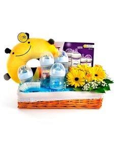 gifts: Bountiful Basket of Baby Bottles!