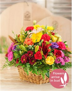 gifts: Basket of Bright Country Flowers!