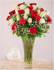 flowers: Red and White Roses in a Vase!