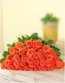 flowers: Orange Roses In cello!