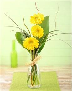gifts: Stepped Yellow Gerbera Arrangement Petite!