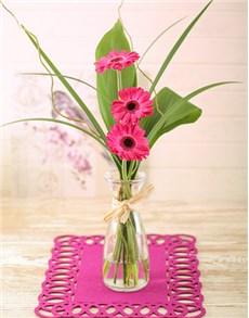 gifts: Stepped Pink Gerbera Arrangement Petite!