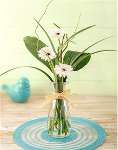 gifts: Stepped White Gerbera Arrangement Petite!