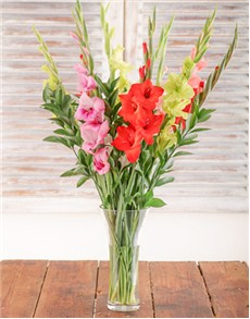 gifts: Mixed Gladiolus in a Glass Vase!