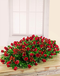 flowers: Red Rose Coffin Spray!