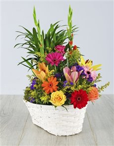 Plant with Flower Arrangement in a Basket