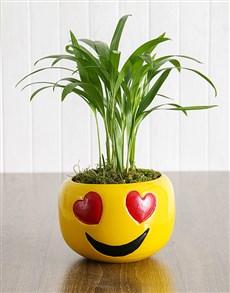 flowers: Heart Eyes Emoji Love Fern Pot!