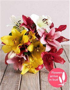 flowers: Mixed Asiflorum Lily Bouquet!