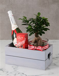 plants: Brilliant Bonsai Heart Crate!